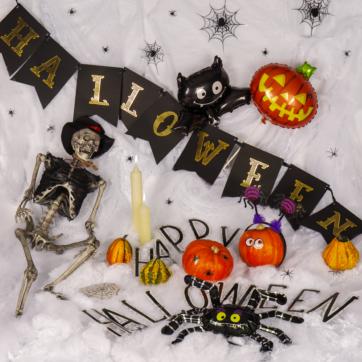 Halloween v Albi